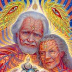 Traduciendo a Shulgin